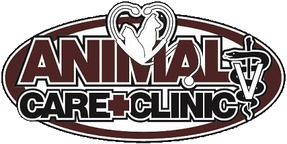 Veterinarian Near Me - Contact Us | Animal Care Clinic